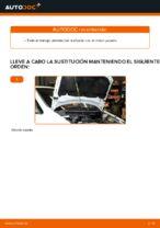 Cómo sustituir la correa acanalada en V del motor en Opel Zafira F75