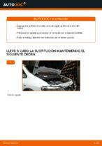 Manual de instrucciones OPEL gratuito