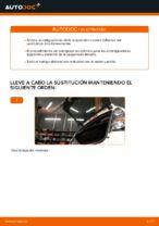 Cambio Amortiguador delanteros y traseros CITROËN bricolaje - manual pdf en línea