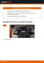 PDF guide för byta: Spiralfjädrar SKODA bak och fram