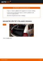 Laga Gasfjäder bakruta: pdf instruktioner för SKODA FABIA