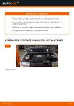 Ako vymeniť uloženie prednej vzpery zavesenia kolies na Skoda Fabia 6Y5