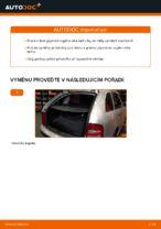 Doporučení od automechaniků k výměně SKODA Skoda Fabia 6y5 1.9 TDI Brzdové Destičky