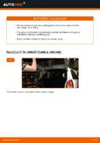 Cum se înlocuiesc amortizoarele pe gaz ale ușii portbagajului pe Opel Zafira F75