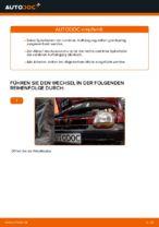 RENAULT Schraubenfeder hinten links rechts wechseln - Online-Handbuch PDF