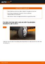 DIY-Leitfaden zum Wechsel von Bremssattel Reparatursatz beim VW SHARAN (7M8, 7M9, 7M6)