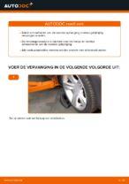 Tips van monteurs voor het wisselen van BMW BMW X3 E83 3.0 d Wiellager