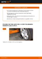 Wie Sie das vordere Federbein am BMW X3 E83 ersetzen