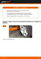 Cómo cambiar y ajustar Amortiguador BMW X3: tutorial pdf