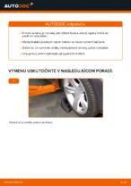Ako vymeniť uloženie prednej vzpery zavesenia kolies na BMW X3 E83