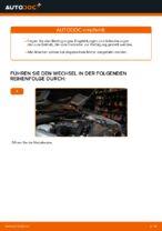 Wie Sie den Motorluftfilter am BMW E39 ersetzen