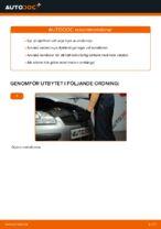 Verkstadshandbok för Ford Focus daw