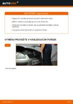 Jak vyměnit motorový olej a olejový filtr na Ford Focus 2 DA diesel