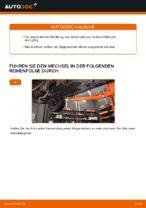 Schritt-für-Schritt-Anweisung zur Reparatur für Ford Mondeo b5y