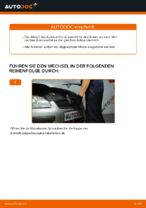 Auto-Reparaturhandbuch online