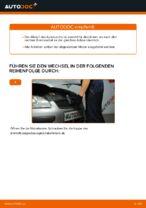 Wie Sie einen vorderen Bremssattel am Ford Focus 2 DA diesel ersetzen