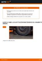Manual de instrucciones FORD FOCUS