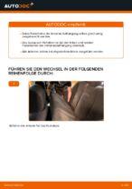Wie der Austausch des hinteren Federbeins beim BMW E39 funktioniert