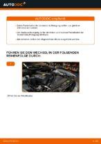 Wie ersetze ich ein vorderes Federbein beim BMW E39