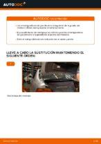 Manual de instrucciones BMW Serie 5