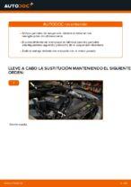 Reemplazar Amortiguador BMW 5 SERIES: pdf gratis