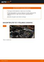 Hur byter man och justera Fjäderben BMW 5 SERIES: pdf instruktioner