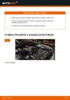 Jak vyměnit vzpěru předního tlumiče na autě BMW E39