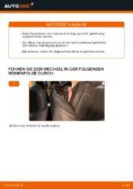 Wie Sie die hinteren Fahrwerksfedern am BMW E39 ersetzen