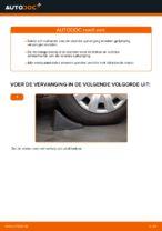 Hoe Chassisveer veranderen en installeren VW SHARAN: pdf handleiding