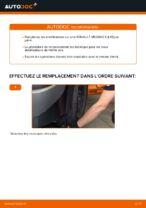 Apprenez à résoudre le problème avec Biellette De Barre Stabilisatrice arrière et avant RENAULT