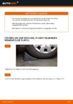 PDF-Anweisung zum Austausch und der Reparatur