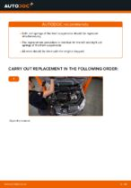 Replacing Suspension springs NISSAN QASHQAI: free pdf