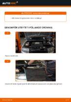 Motordelar byta och reparationsmanual med illustrationer