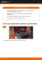 Kuidas asendada BMW E46 Cabrio esimesi pidurikettaid