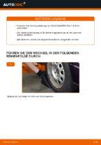 Wie Pendelstütze VW GOLF austauschen und anpassen: PDF-Anweisung