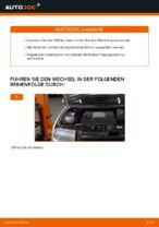 SKODA Wartungsanweisung PDF