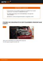Installation von Bremssteine BMW 3 Convertible (E46) - Schritt für Schritt Handbuch