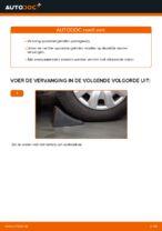 Hoe u de spoorstangeinden van een BMW E46 kunt vervangen