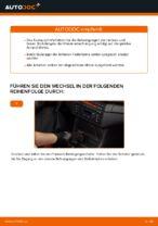 Wie hinten und vorne Federbeinstützlager tauschen und einstellen: kostenloser PDF-Tutorial