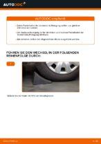 Wie ersetze ich ein vorderes Federbein beim BMW E46