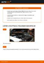 Hvordan bremseskiverne bag på BMW E39 udskiftes