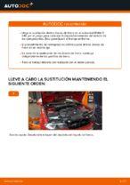 Cambio Juego de frenos de disco traseras y delanteras BMW bricolaje - manual pdf en línea