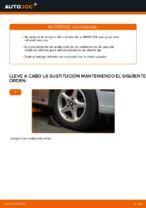 Cómo cambiar el rodamiento de cubo de la rueda delantera en BMW E39