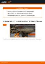 Jak wymienić olej silnikowy i filtr oleju w BMW E46
