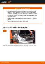 Cum se înlocuiesc și se ajustează Discuri frana TOYOTA LAND CRUISER: manual pdf