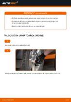 Schimbare Amortizor TOYOTA LAND CRUISER: manual de intretinere si reparatii
