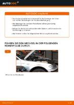 Wie Sie das vordere Federbein am BMW E46 Touring ersetzen