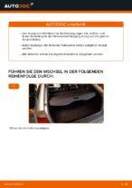 So tauschen Sie ein hinteres Domlager beim BMW E46 Touring aus