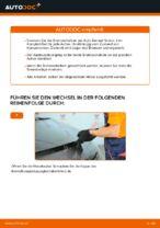 Ratschläge des Automechanikers zum Austausch von RENAULT Renault Scenic 2 1.5 dCi Innenraumfilter