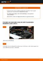Wechseln von Scheibenbremsbeläge BMW 5 SERIES: PDF kostenlos